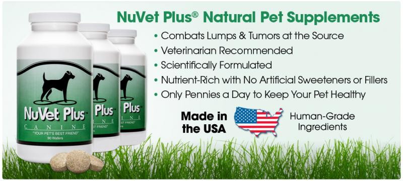 NuVet Vitamins heal Allergies, Itching and Scratching, Hotspots